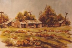 McCarthy Ranch-Milpitas