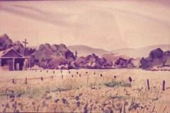 Past-backyard-Gilroy